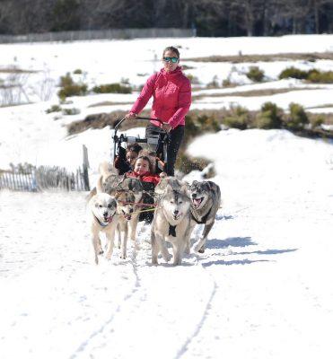 balade en chiens de traîneaux Pailherols