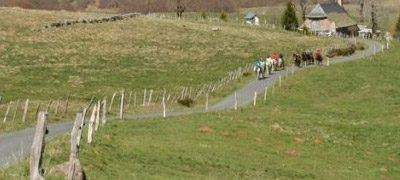 Randonnée à cheval à la Tuillère Cantal