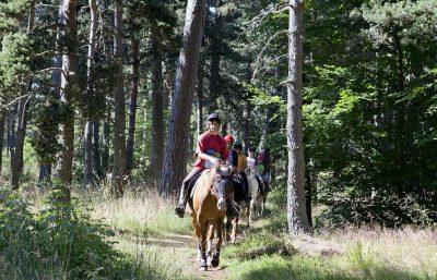 balade à cheval dans le Cantal Auvergne