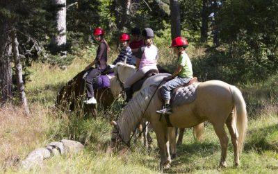 balade à cheval avec des enfants Cantal
