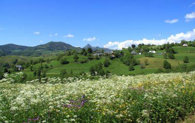 Nierveze Carlades Cantal Auvergne vue sur le Puy griou