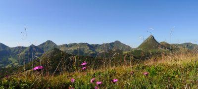 Puy Griou dans le Cantal au printemps