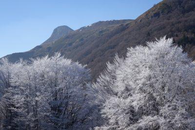 Puy Griou font de Cère Cantal Auvergne