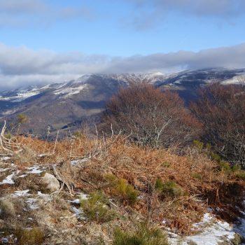 GR-elanceze-griou-hiver-massif-cantalien