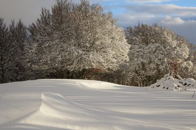 Paysage du Cantal en hiver