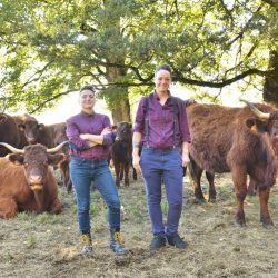 garde manger à polminhac les vaches salers