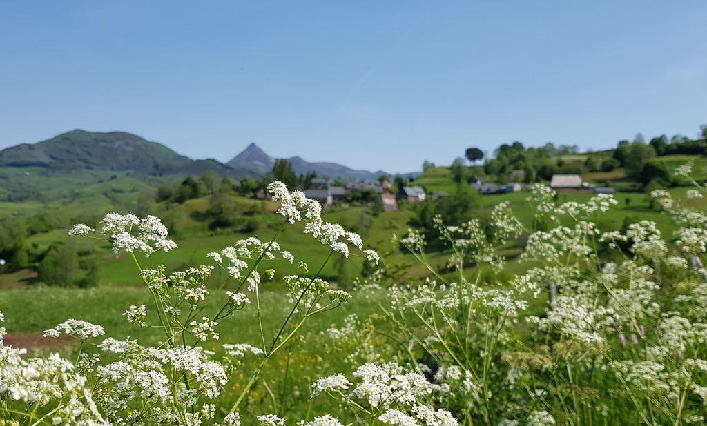 Hameau de Niervèze dans le Cantal