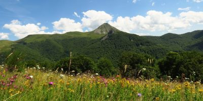 Massif Cantalien : vue sur le Puy Griou dans le Cantal