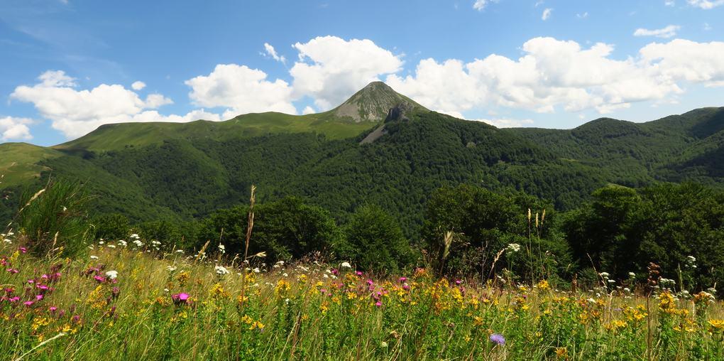 Vue sur le Massif Cantalien vers le Puy Griou