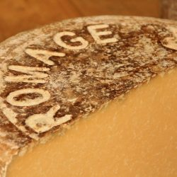 fomage cantal et salers - fromages AOP d'Auvregne