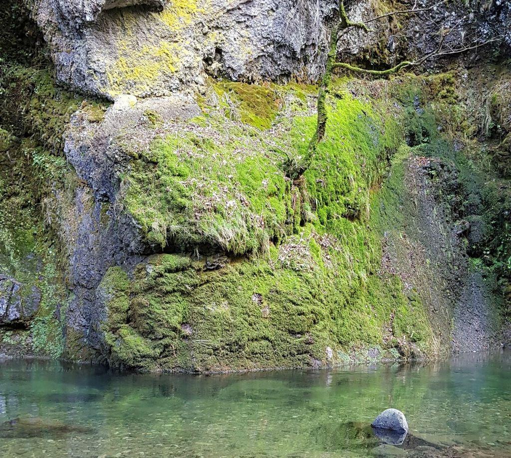 les gorges du pas de cere dans le Cantal - auvergne