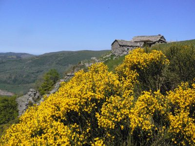 niercombe-buron-insolite-cantal-auvergne-nature