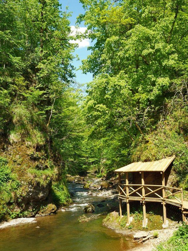 sentier des Gorges de la Jordanne Cantal